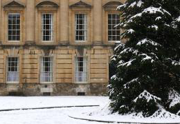 Christmas tree in Peckwater Quad in the snow